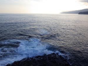 波のうねりが興味深い。 良い漁場のようだ。