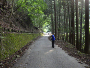 最後の核心は長い林道歩き。旧ゲート付近。